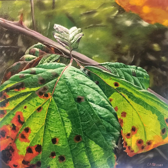 Woodland Gems Art Gallery - Bramble Leaves Painting By Cowfold West Sussex Artist Carole Skinner-Rupniak from Lewes
