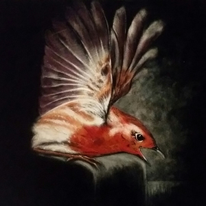 Bird Painting – Wildlife Art Gallery – Billingshurst West Sussex Artist Keith Coomber