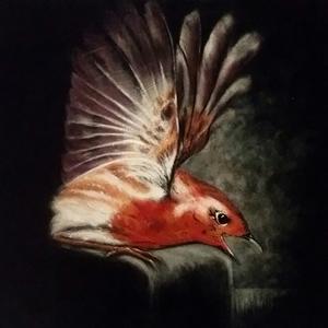 Bird Painting – Wildlife Art Gallery – Billingshurst West Sussex Artist Keith Coomber