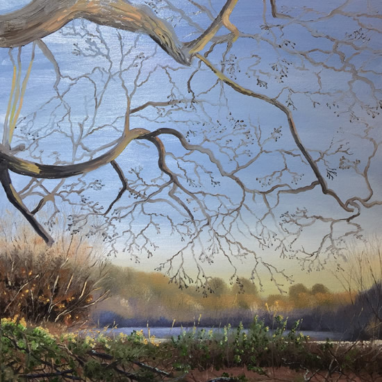 Woodlands Treasures Art Gallery - New Day - Painting By Cowfold West Sussex Artist Carole Skinner-Rupniak