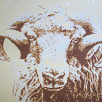 Ram Art – Ramases Original Screen Prints – Acrylic Ink – Shirley Parker-Gore Art – Rye East Sussex Artists