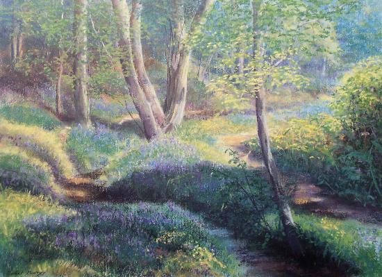 Ashdown Bluebells, Ashdown Forest, East Sussex - Pastel Landscape Artist - Juliet Murray - Sussex Artists Gallery