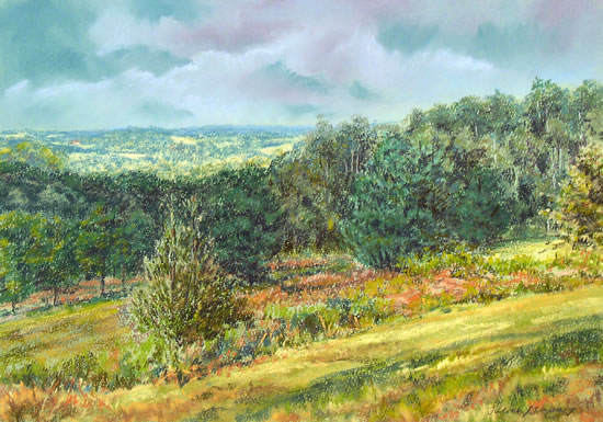 Ashdown Forest near Mardens Hill, Crowborough - Juliet Murray - Sussex Artist Gallery - Pastel Landscape Artist