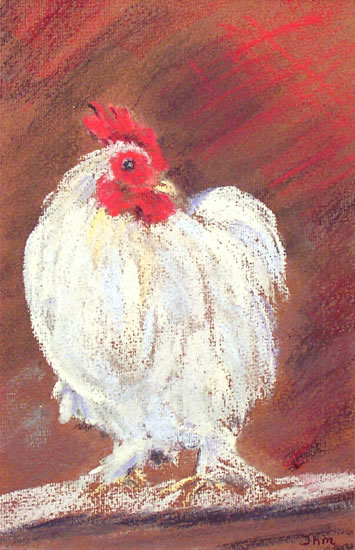 Bantam Cockerel - East Sussex Artist Juliet Murray - Sussex Artists Gallery - Pastel Landscape Artist