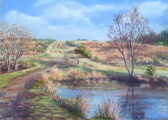 Ellison's Pond, Ashdown Forest - East Sussex Artist Juliet Murray - Sussex Art Gallery