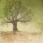 Fathers Tree – West Sussex Artist – Bleau Shanay Hudson – Woodland Art – Sussex Artists Gallery