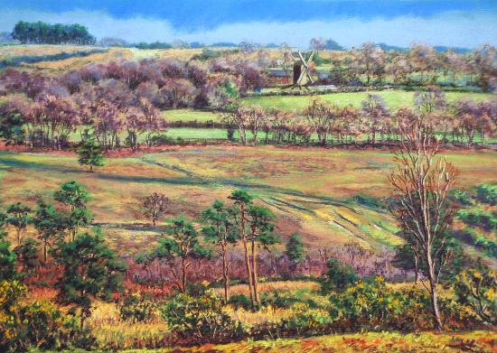 Nutley Windmill From Millbrook - Juliet Murray - East Sussex Landscape Artist - Art Gallery