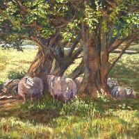 Sheep in Dappled Shade, Ashdown Forest, East Sussex – Pastel Landscape Artist – Juliet Murray – Sussex Artists Gallery