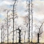 Trees – Guardians – West Sussex Artist – Bleau Shanay Hudson – Woodland Art – Sussex Artists Gallery