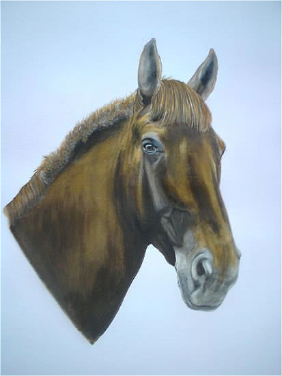 Horse Portrait - Chloe - Animal Portrait - East Sussex Artist - 'Fro' (Derek Froggatt) - Wannock Artists