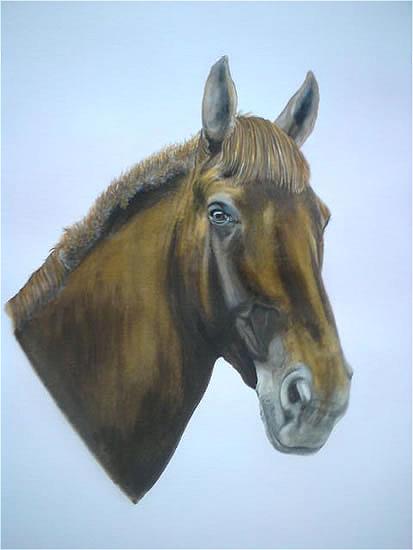 Horse Portrait - Chloe - Animal Portrait - East Sussex Artist - 'Fro' (Derek Froggatt) - Wannock Artists