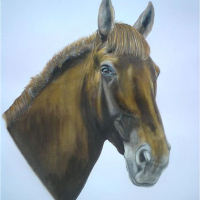 Horse Portrait – Chloe – Animal Portrait – East Sussex Artist – 'Fro' (Derek Froggatt) – Wannock Artists