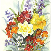 Spring Bouquet – Floral Art Prints – Sussex Artist – Audrey Laycock – Watercolour Gallery