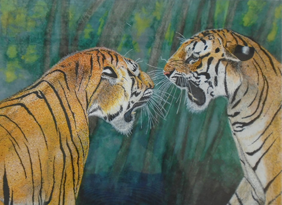 Two Young Tigers Roaring - Horsham, West Sussex Artist - Roger Gasson