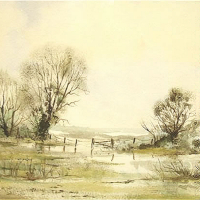 Water Meadows, Ripley, Surrey – Fine Art Prints – Sussex Artist – Audrey Laycock – Watercolour Gallery
