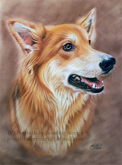 Portrait Of Dog - Lexie - Jennifer Morris - Pet Portraiture Artist - Sussex Art Gallery