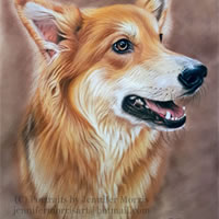 Portrait of Dog – Lexie