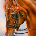 Portrait of Horse – Woodlander Firefly