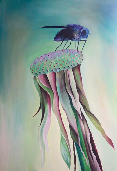 Dandelion and Fly - Claire Harrison West Sussex Artist