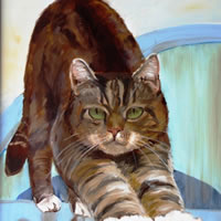 Cat portrait art by Sarah James