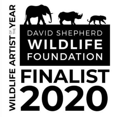 David Shepherd Wildlife Artist of The Year Finalist 2020