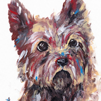 Pet Portraits Dog Terrier by Artist Rachael Tan