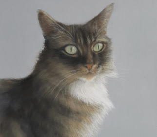 Cat Portrait Ellie - East Harting Sussex Artist Helen Thair