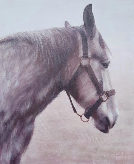 Equine Artist from East Harting Sussex - Helen Thair - Percheron