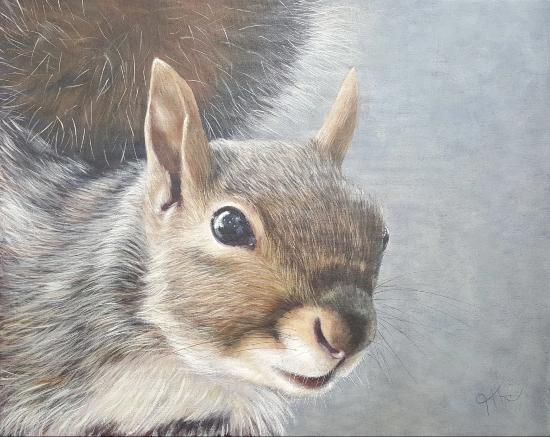 Grey Squirrel - Wildlife painting by Sussex Hampshire Border Artist Helen Thair