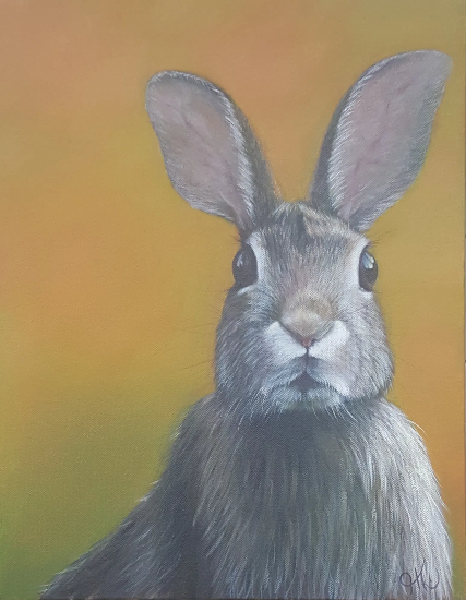 Rabbit - Wildlife Portrait - Sussex Artist Helen Thair