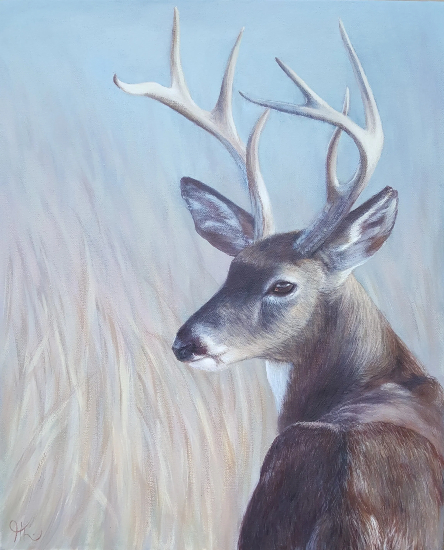 Stag - Wildlife Portrait by Animal Artist Helen Thair from East Harting Sussex