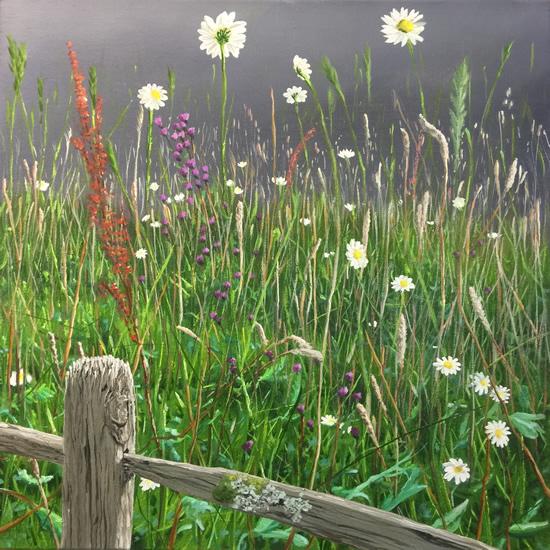 Wild Flower Meadow - Nature Art Gallery