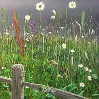 Wild Flower Meadow Painting