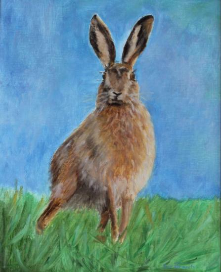 Hare - Cheeky Fella - Wildlife Portrait - Frinton-on-Sea Artist Sue Branch