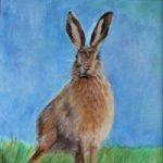 Hare – Cheeky Fella – Wildlife Portrait – Frinton-on-Sea Artist Sue Branch