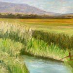 Pevensey Levels East Sussex – Landscape Gallery – Frinton-on-Sea Artist Sue Branch