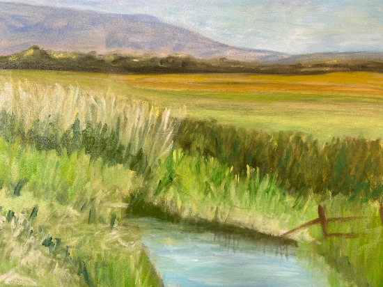 Pevensey Levels East Sussex - Landscape Gallery - East Sussex Artist Sue Branch