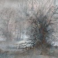 Pevensey Marshes Mid-Winter – Beautiful Landscape Art by Eastbourne Artist Chris Hill