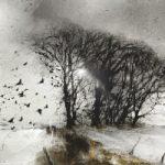 Pevensey Marshes – Windswept and Interesting – Eastbourne Landscape Artist Chris Hill