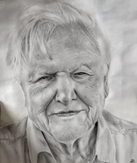Portrait Sir David Attenborough - Graphite Pencil Drawing - Horsham Artist Lizzy Montague