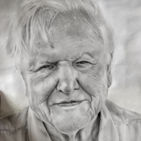 Portrait Sir David Attenborough – Graphite Pencil Drawing – Horsham Artist Lizzy Montague