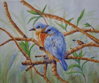 Bluebirds Watercolour Painting - Mayfield East Sussex Animal Artist Nathalie Bos
