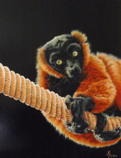 Curious Lemur - Oil on Canvas - Animal Artist Nathalie Bos