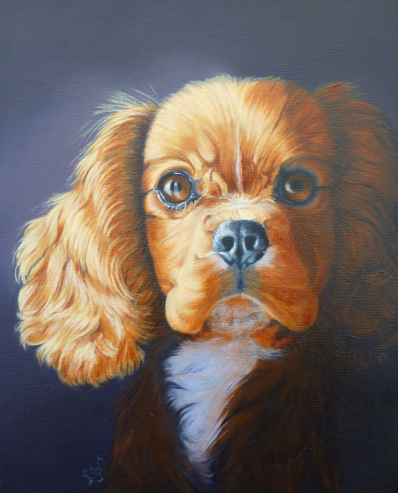 Dog Portrait - Pet Portraits by Mayfield East Sussex Artist Nathalie Bos