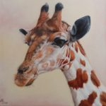 Giraffe Oil Painting – Mayfield East Sussex Animal and Wildlife Artist Nathalie Bos