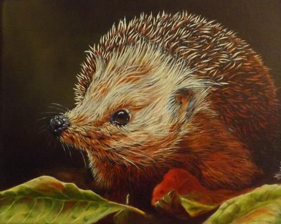 Hedgehog - Winter is Coming - Animal Artist and Crowborough Arts member Nathalie Bos