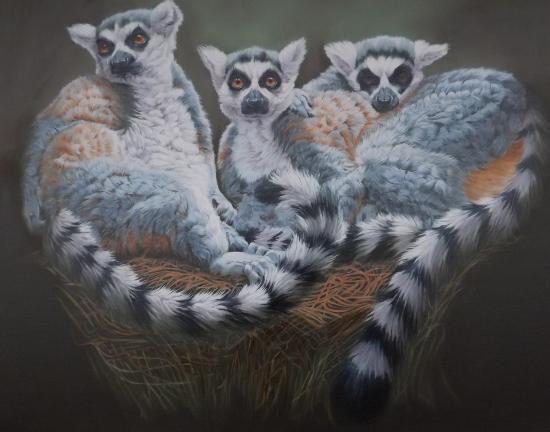Lemurs Oil Painting - Crowborough Arts member Nathalie Bos