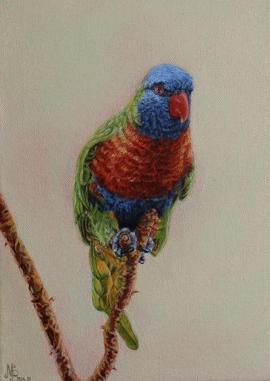 Rainbow Lorikeet - Oil Painting - East Sussex Bird Artist Nathalie Bos